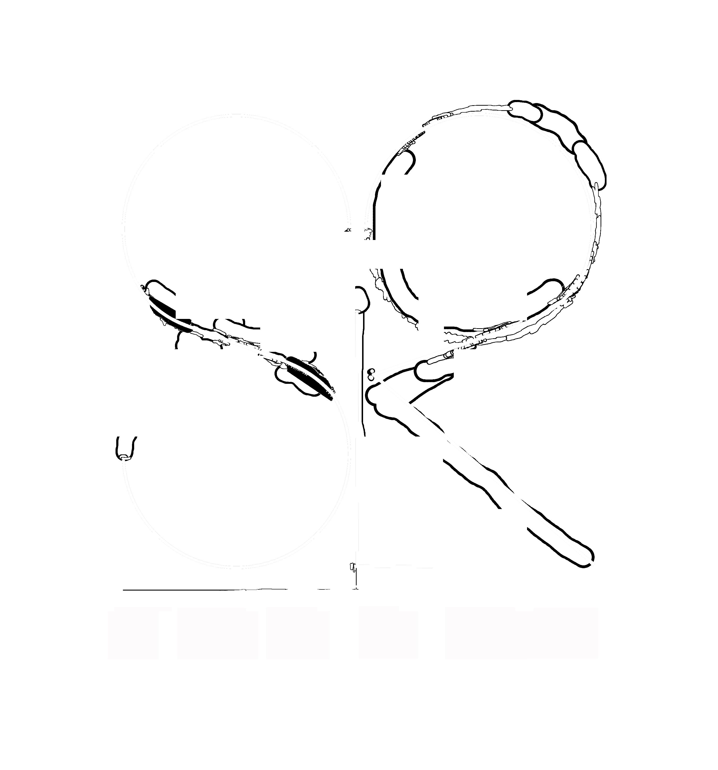Studio La Roze
